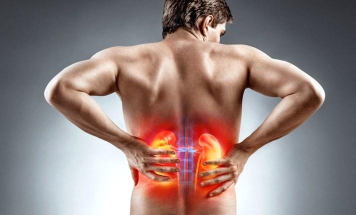 Что делать, если почки болят: симптомы и причины болей