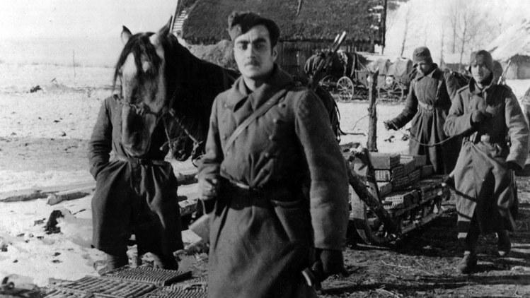 «Голубая дивизия», Сталинград, ноябрь 1942 года